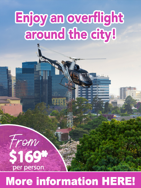 Promo-sobrevuelo_CTA-Ingles-450x600-Recovered